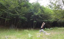 yoga265
